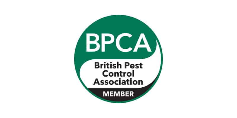 BPCA Member Glasgow - British Pest Control Association - Pest Solutions