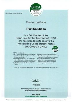 BPCA Certificate - British Pest Control Association - Pest Solutions