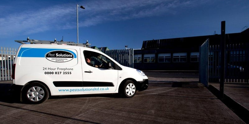 Glasgow Scotland Pest Solutions