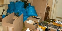 House Clearance Glasgow - Pest Solutions - Pest Prevention