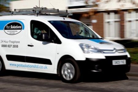 Pest Control Edinburgh - Pest Solutions