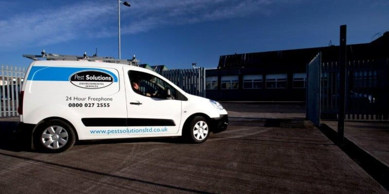 Pest Control Services Glasgow - Pest Solutions - Pest Prevention