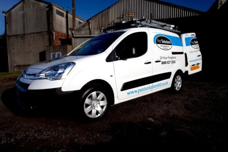 Pest Prevention Glasgow - Pest Solutions