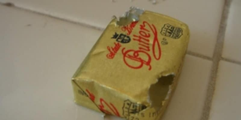 Rodent Damaged Butter Package - Rats - Mice - Pest Solutions Glasgow